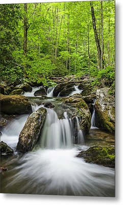 Smith Creek, Springtime Metal Print