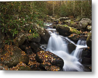 Smokies Stream In Autumn Metal Print by Andrew Soundarajan