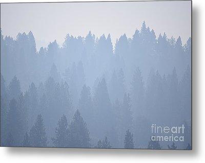 Smoky Pines Metal Print