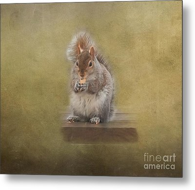 Snackin Squirrel Metal Print by Kathleen Rinker
