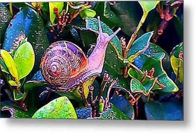 Snail 5 Metal Print