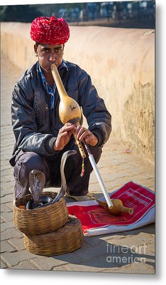 Snake Charmer Metal Print by Inge Johnsson