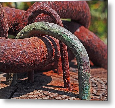 Snaking Rust  Metal Print by Rona Black
