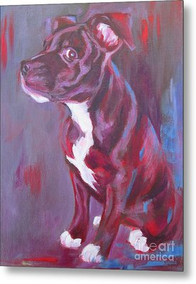 Sneaky Look - Staffy Metal Print