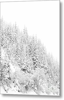 Snoqualmie Pass Metal Print