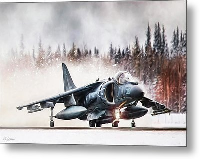 Snow Angel Harrier Metal Print by Peter Chilelli