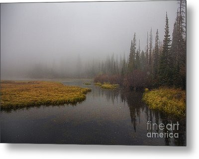 Metal Print featuring the photograph First Snow by Spencer Baugh