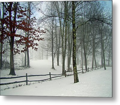Snow Begins Metal Print