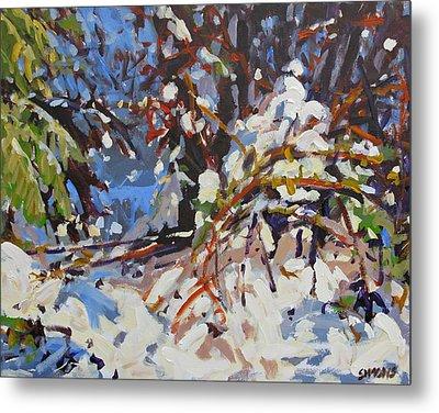 Snow Bound Metal Print by Brian Simons