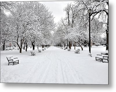 Snow Covered Benches And Trees In Washington Park Metal Print by Shobeir Ansari