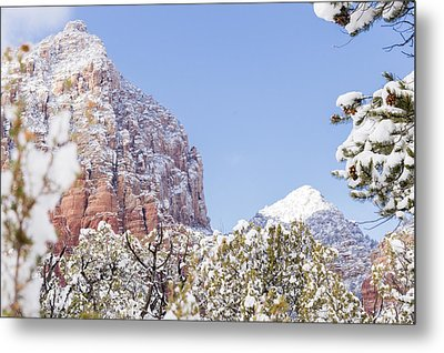 Snow Covered Metal Print by Laura Pratt