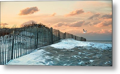 Metal Print featuring the photograph Snow Fence by Robin-lee Vieira