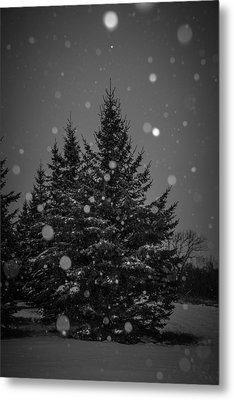 Snow Flakes Metal Print by Annette Berglund