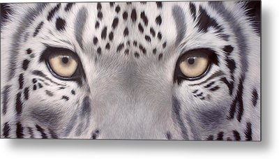 Snow Leopard Eyes Painting Metal Print