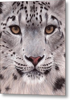 Snow Leopard Face Metal Print
