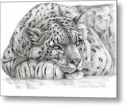 Snow Leopard Metal Print by Svetlana Ledneva-Schukina