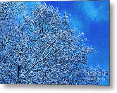Metal Print featuring the photograph Snow On Branches Photo Art by Sharon Talson
