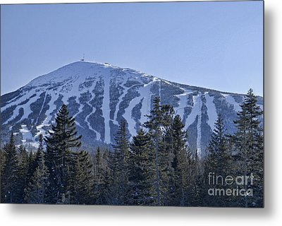 Snow On The Loaf Metal Print by Alana Ranney
