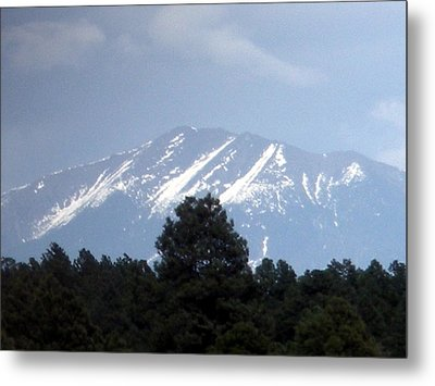 Metal Print featuring the photograph Snow On The Mountain by Jeanette Oberholtzer