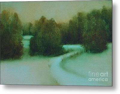Snow Path Metal Print by Jana Baker