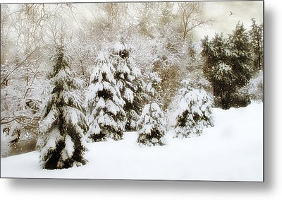 Snow Pines Metal Print by Jessica Jenney