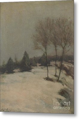 Snow Scene Metal Print by Celestial Images