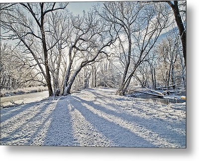 Snow Shadows Metal Print by James Steele