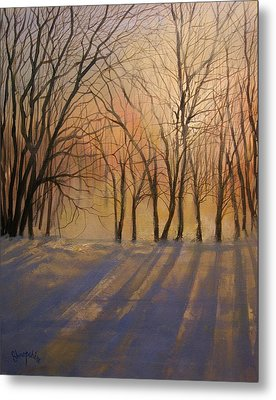 Snow Shadows Metal Print by Tom Shropshire