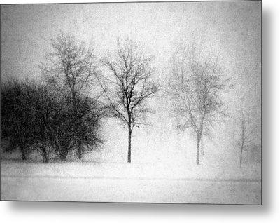 Snow Storm Metal Print by Todd Klassy