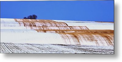 Snow Stubble Tree Line 13955 Metal Print by Jerry Sodorff