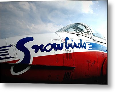 Metal Print featuring the photograph Snowbirds 2 by Mark Alan Perry