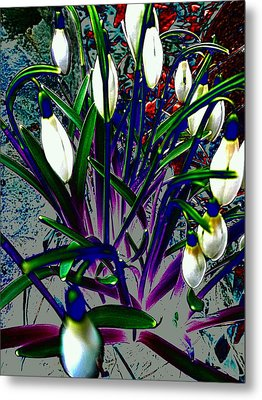 Snowdrops In Abstract  Metal Print by Beth Akerman