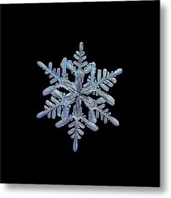 Snowflake Macro Photo - 13 February 2017 - 1 Black Metal Print by Alexey Kljatov