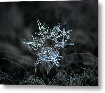 Metal Print featuring the photograph Snowflake Of 19 March 2013 by Alexey Kljatov