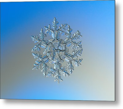 Metal Print featuring the photograph Snowflake Photo - Gardener's Dream by Alexey Kljatov
