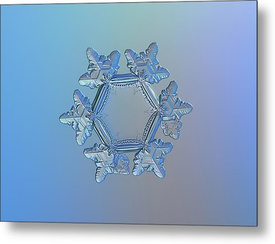 Snowflake Photo - Sunflower Metal Print by Alexey Kljatov