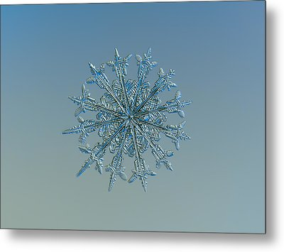 Metal Print featuring the photograph Snowflake Photo - Twelve Months by Alexey Kljatov