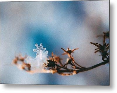 Snowflake Metal Print by Tracy  Jade