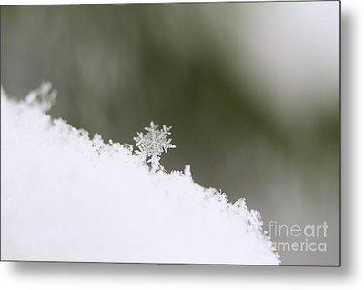 Snowflake Metal Print by Victor K