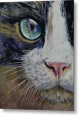 Snowshoe Cat Metal Print by Michael Creese