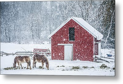 Snowstorm Stowe Vermont Metal Print by Edward Fielding
