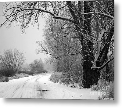 Snowy Branch Over Country Road - Black And White Metal Print