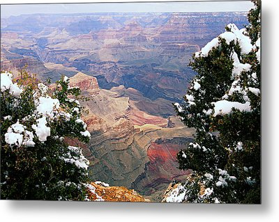 Snowy Dropoff - Grand Canyon Metal Print by Larry Ricker