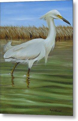 Snowy Egret 1 Metal Print by Phyllis Beiser