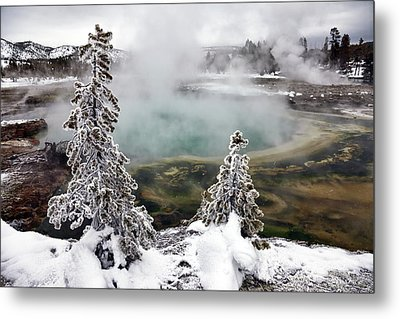 Snowy Yellowstone Metal Print by Jason Maehl