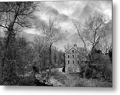 Metal Print featuring the photograph Snuff by Diana Angstadt