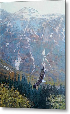 Soaring Eagle Metal Print by Donald Maier