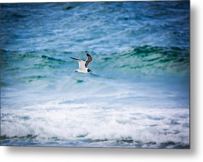 Soaring Over The Ocean Metal Print by Shelby Young