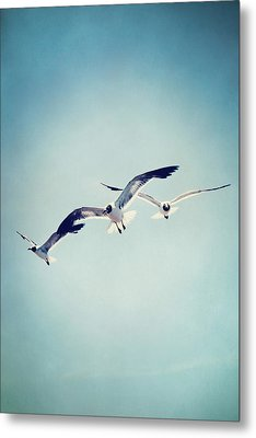 Metal Print featuring the photograph Soaring Seagulls by Trish Mistric