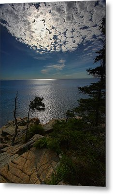 Soft Light On Otter Point Metal Print
